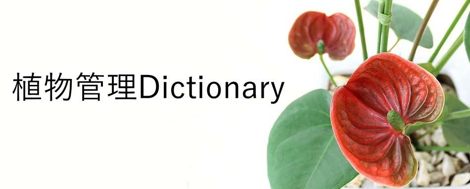 植物管理Dictionary