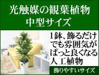 中型 人工 観葉植物