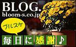 観葉植物 ブログ
