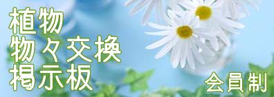植物・お花を物々交換
