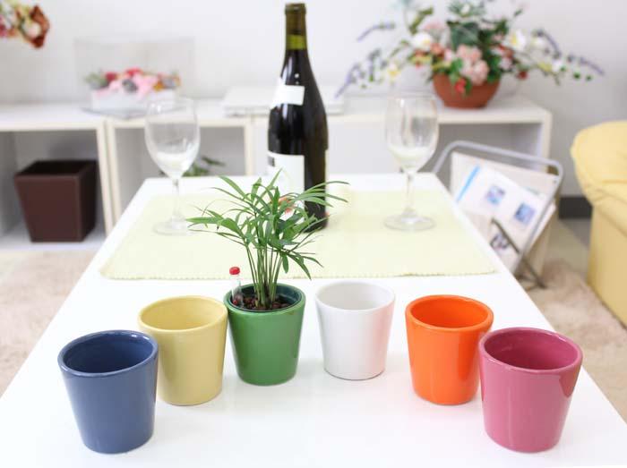 ミニ観葉植物 テーブルヤシ