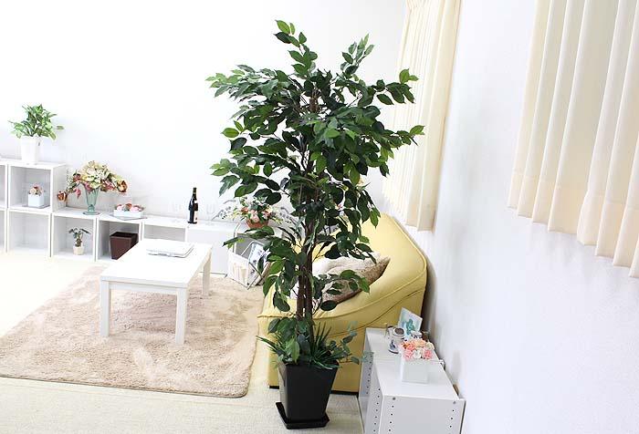 人工 幸福の木
