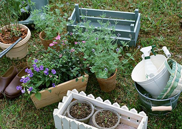 野菜&ハーブ 種まき時期一覧表