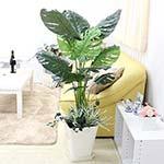光触媒 人工観葉植物の通販