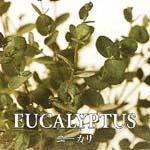 ユーカリ EUCALYPYUS