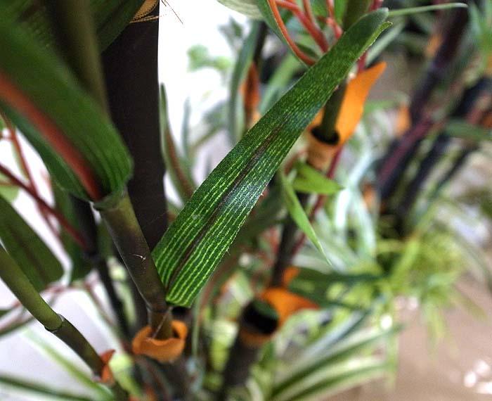 人工 黒竹の葉